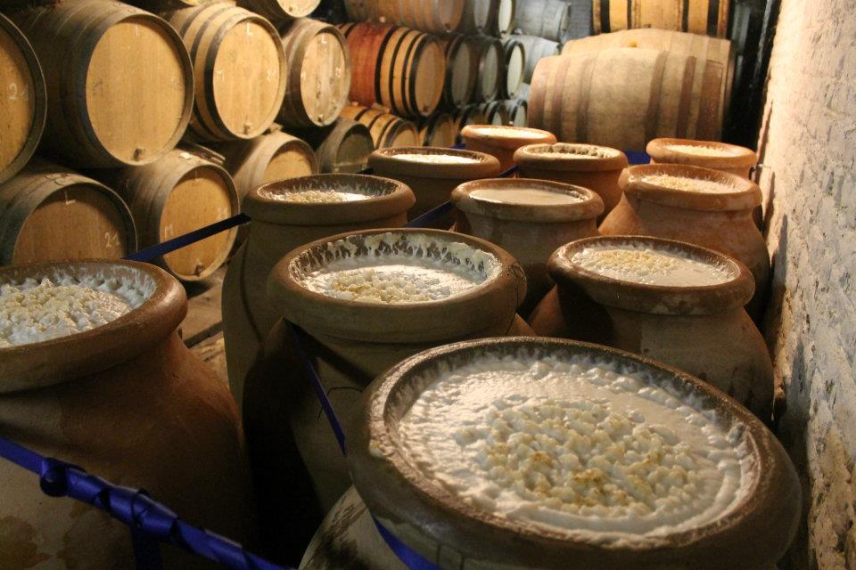 Процесс приготовления пива