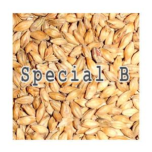 Солод Special B, 100 г