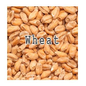 Солод Wheat, 1 кг