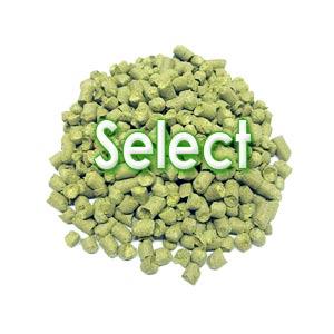Хмель Select, 4,5%