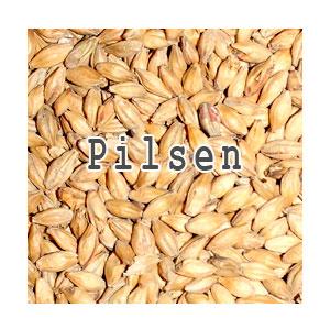 Солод Pilsen, 1 кг